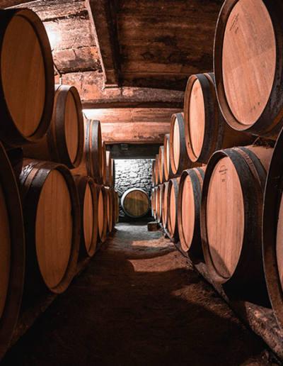 Saumer-Vin-maine-et-loire